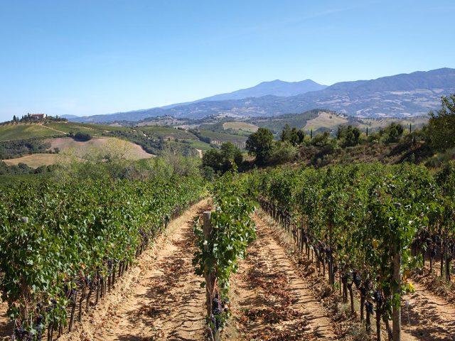 maremma-toscana-granaio-lorenese